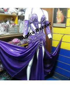 Professional Egytian Belly Dance Costume (AB022)