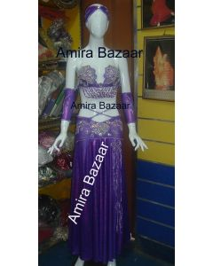 Professional Egytian Belly Dance Costume (AB023)